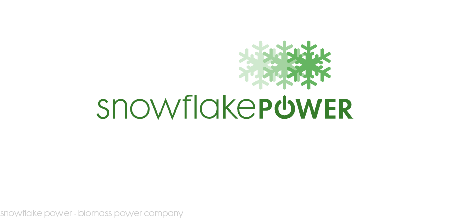 Snowflake Power logo